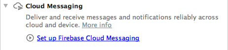set up firebase cloud messaging